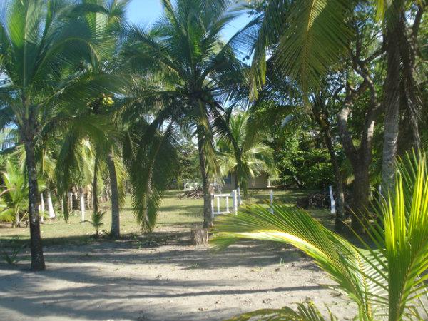 CHIRIQUI LAS LAJAS COMMERCIAL BEACH LOT FOR SALE 2