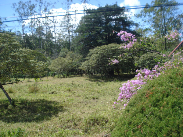 CHIRIQUI VOLCAN MOUNTAIN VIEW  LOT FOR SALE