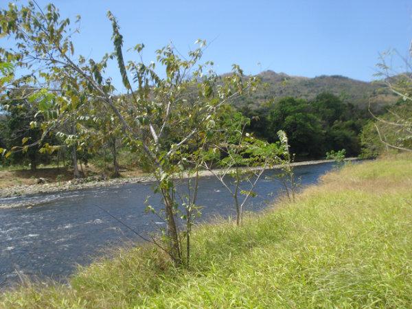 WATERFRONT LAND FOR SALE SANTA FE, VERAGUAS PANAMA, PROPIEDAD FRENTE AL RIO PARA LA VENTA