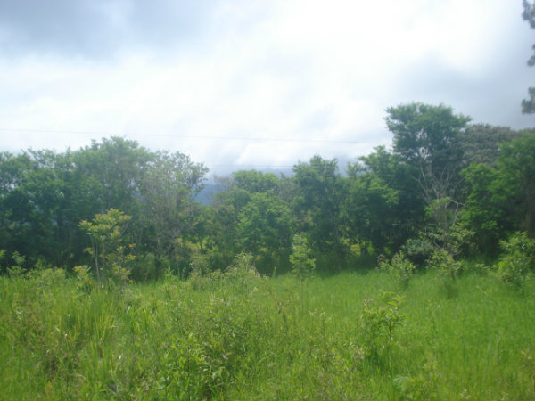 MOUNTAIN LOT FOR SALE, CAISAN, VOLCAN BUGABA, DAVID, CHIRIQUI, PANAMA, LOTE DE MONTAÑA PARA LA VENTA