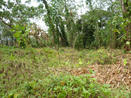 LAND, FOR SALE, 14 HECTARES, NUEVO CHORRILLO, NUEVO EMPERADOR, ARRAIJAN, PANAMA, TERRENO, SE VENDE