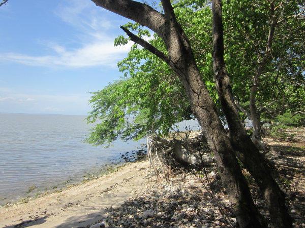 Cartagena ISLA BARU Beachfront development property