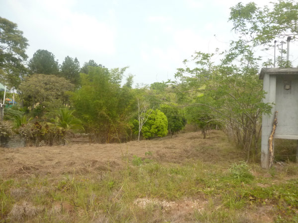 NUEVO EMPERADOR, ARRAIJAN, PANAMA, LOTE DE 1000M2, VENDO, 1000M2 LOT, FOR SALE