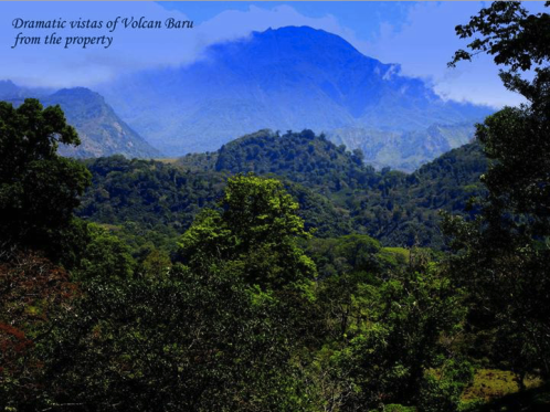 CHIRIQUI VOLCAN 3 HECTARES MOUNTAIN PROPERTY FOR SALE