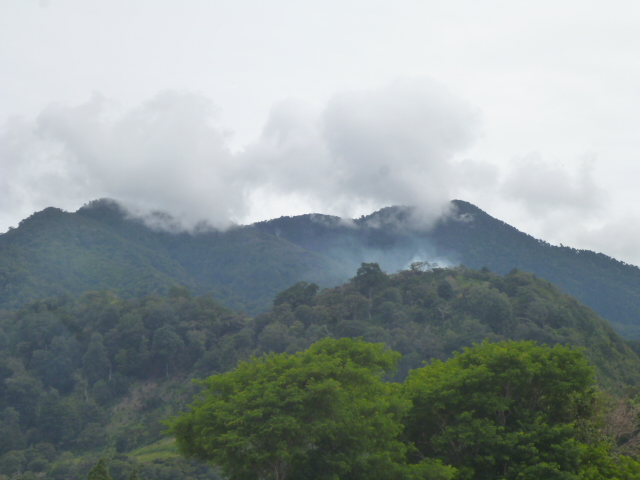 CHIRIQUI, BUGABA, CERRO PUNTA, LOT FOR SALE IN PASO ANCHO