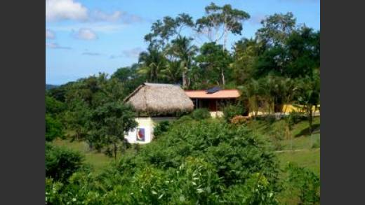 FARM, FOR SALE, OCEAN VIEW, MOUNTAIN VIEW, CAPIRA, PANAMA, FINCA, PARA LA VENTA