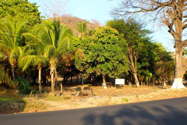 Flamingo beach development Property