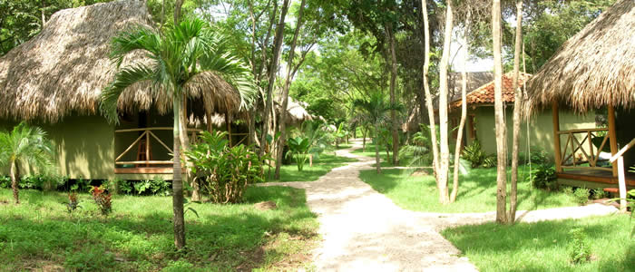 Hotel Business Playa Grande