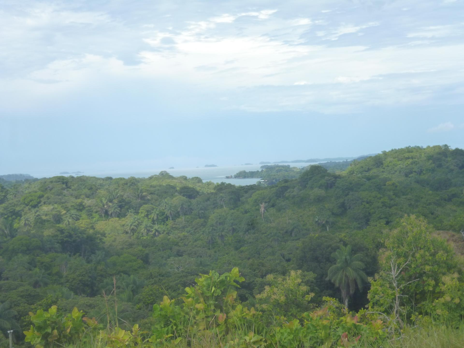 CHIRIQUI, BOCA CHICA, OCEAN AND MOUNTAIN VIEW PROPERTY.