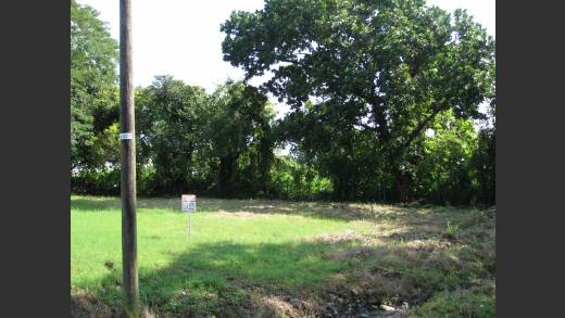 PROPERTY FOR SALE, 1004 M2 LOT, DAVID CHIRIQUI PANAMA, PROPIEDAD PARA LA VENTA