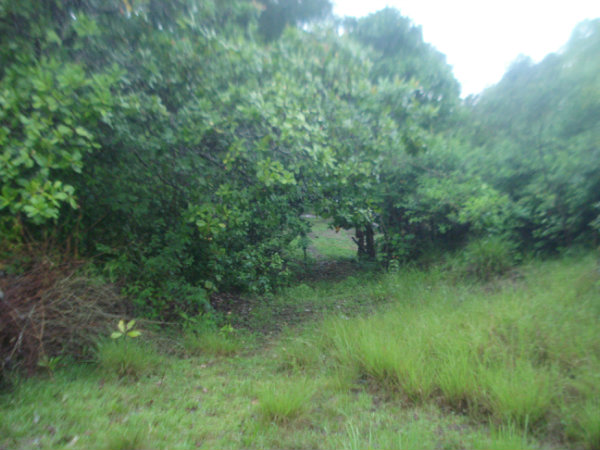 CHIRIQUI DOLEGA LOT FOR SALE.