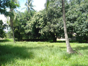 PROPERTY FOR SALE, AMADOR HEIGHTS, PANAMA