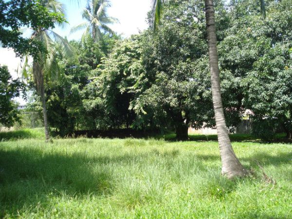FOR SALE PROPERTY LOCATED IN AMADOR HEIGHTS, PANAMA, PARA LA VENTA PROPIEDAD