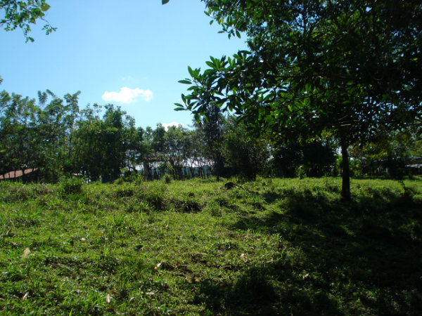 CHIRIQUI, BOQUERON, COUNTRYSIDE PROPERTY.