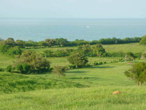 FOR SALE, LAND IN PUNTA COCOS, LAS TABLAS, LOS SANTOS, PANAMA, SE VENDE