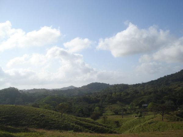 FARM FOR SALE, FINCA ROMPEOLAS, CANITAS DE CHEPO, PANAMA, FINCA SE VENDE